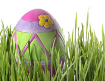 Easter eggs in the grass Stock Image