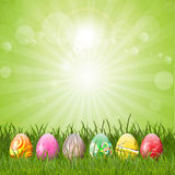 Easter eggs in grass. Decorative Easter eggs in a grassy landscape Royalty Free Stock Image