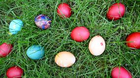 Easter eggs in the grass stock video footage