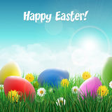 Easter eggs on a grass field with flowers. Stock Photography