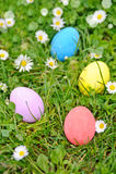 Easter eggs on the grass flower Stock Images