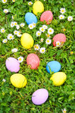 Easter eggs on the grass flower Royalty Free Stock Image