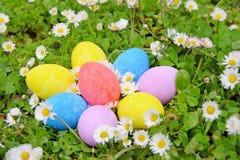 Easter eggs on the grass flower Stock Image