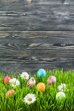Easter Eggs in Grass. With flower, wooden background Royalty Free Stock Photography