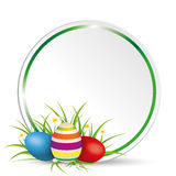 Easter Eggs Grass With Flowers Circle Stock Photo