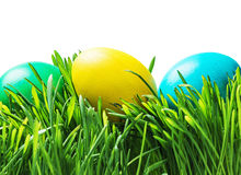 Easter eggs on the grass isolated on white Stock Photos