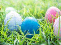 Easter eggs on grass. In park Royalty Free Stock Image