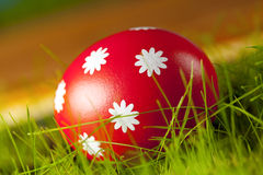 Easter eggs on grass Royalty Free Stock Images