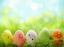Easter eggs in grass. Row of Easter eggs in Fresh Green Grass Royalty Free Stock Photography
