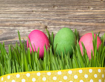 Easter eggs in the grass. On rustic wooden background Stock Image