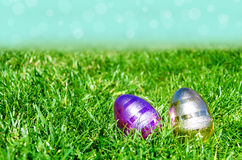 Easter eggs on the grass and sky background Stock Image