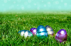 Easter eggs on the grass and sky background Stock Photos
