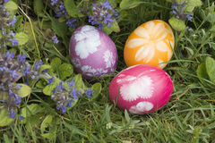 Easter eggs in the grass 4 royalty free stock images
