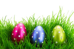 Easter eggs in grass Stock Photography