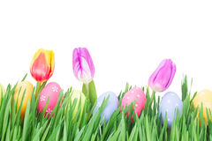 Easter eggs in grass. With tulips isolated on white background Stock Image