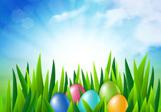 Easter eggs in the grass. Vector illustration Stock Photography