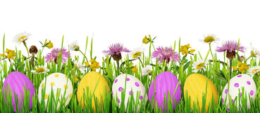 Easter eggs, grass and wild flowers border Royalty Free Stock Images