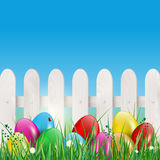 Easter eggs in grass, wooden fence and blue sky Royalty Free Stock Image