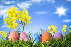 Easter eggs on grass, yellow flowers blue sky. Easter eggs on natural grass sun blue sky royalty free stock photo