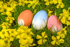 Easter eggs on grass, yellow flowers. Easter eggs on natural grass sun blue sky royalty free stock images