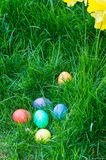 Easter eggs in a grassy lawn Stock Images