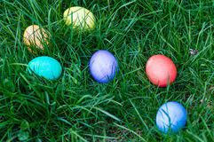 Easter eggs in a grassy lawn Royalty Free Stock Photo