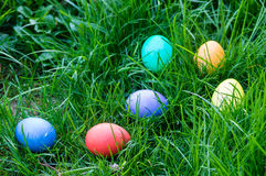 Easter eggs in a grassy lawn Stock Image