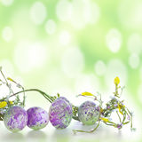 Easter eggs in green Royalty Free Stock Photos