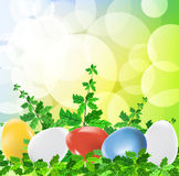 Easter eggs on green background Stock Image