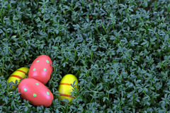 Easter eggs on a green background Stock Image
