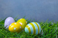 Easter eggs in green grass Royalty Free Stock Image
