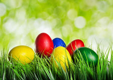 Easter eggs on green grass Royalty Free Stock Photography