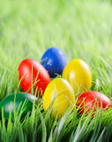 Easter eggs on green grass Royalty Free Stock Images