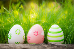 Easter eggs on green grass Stock Photos