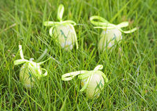 Easter eggs on green grass. Royalty Free Stock Photo