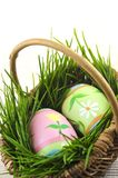 Easter eggs with green grass Stock Photo