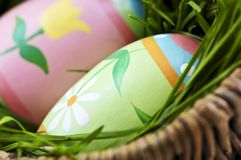 Easter eggs with green grass Stock Photos