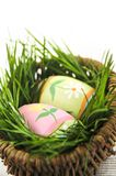 Easter eggs with green grass Royalty Free Stock Images
