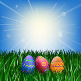 Easter eggs on the green grass. Against the blue sky with the sun Stock Photo