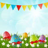 Easter eggs on green grass. Background Stock Photos