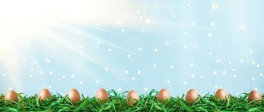 Easter eggs on green grass with bokeh and sunlight on a blue background Easter concept stock illustration