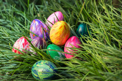 Easter eggs on the green grass close-up Stock Image