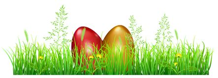 Easter eggs in green grass. With dandelions and spikelets on white background Stock Image