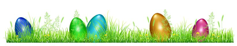 Easter eggs in green grass. With dandelions and spikelets on white background Royalty Free Stock Image
