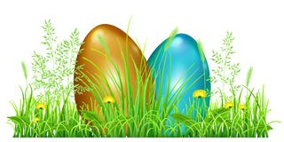 Easter eggs in green grass. With dandelions and spikelets on white background Stock Photo