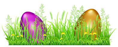 Easter eggs in green grass. With dandelions and spikelets on white background Royalty Free Stock Photo