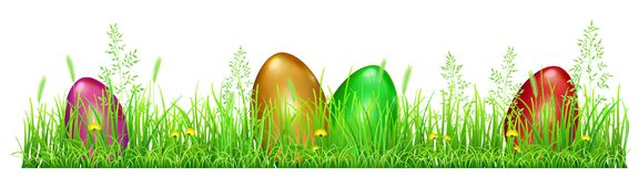 Easter eggs in green grass. With dandelions and spikelets on white background Royalty Free Stock Photography
