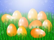 Easter eggs in green grass. Easter eggs in green grass in the sun Royalty Free Stock Image