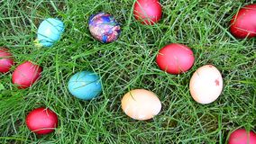Easter eggs in the green grass stock video