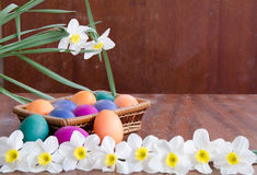 Easter eggs in green grass. Festive decoration. Happy Easter stock image